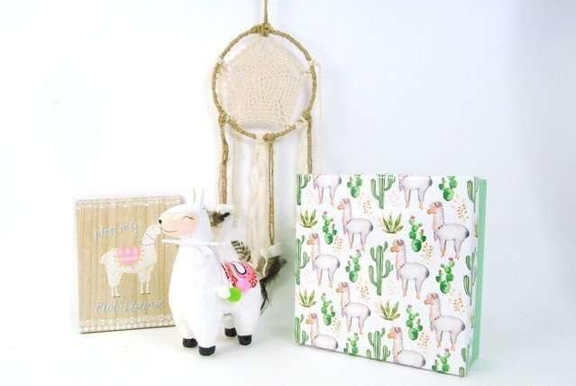 Girls Llama Gift Set