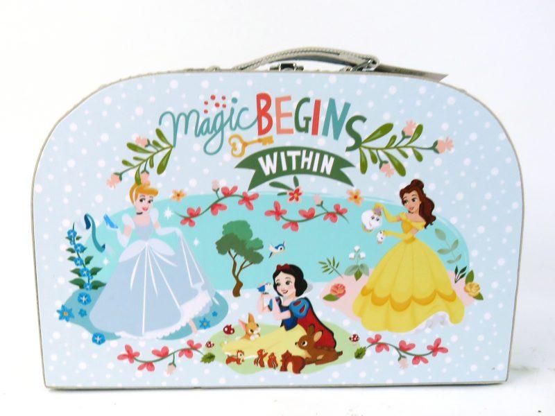 Disney Princess Carry Case